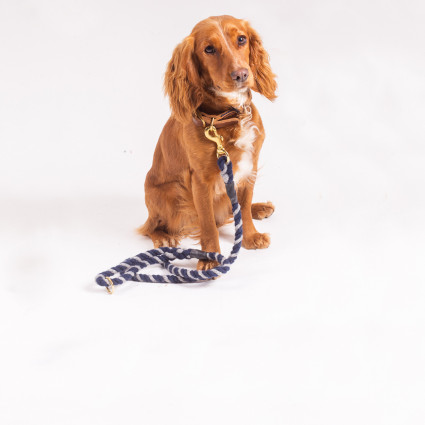 Twisted Rope Leads